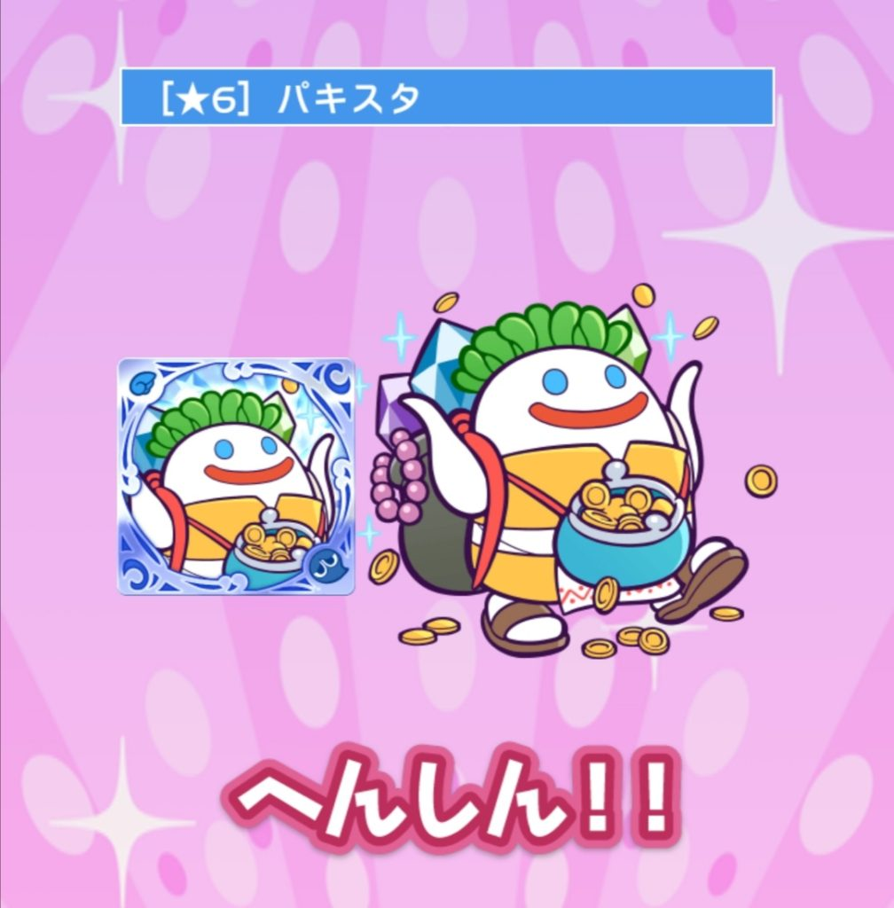 ☆6パキスタ